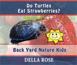 Do Turtles Eat Strawberries
