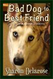 Bad Dog to Best Friend
