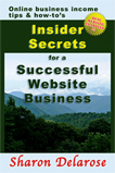 Insider Secrets for a Successful Website Business
